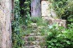 alte Treppe vor dem Olivenöl Museum in Parga